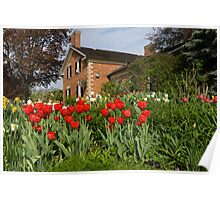 Tulip Garden - Marvelous Spring Flower Beds With Red Tulips and More Poster