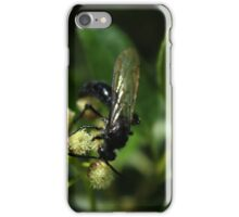 Black Bee on a White Flower iPhone Case/Skin
