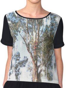 Eucalyptus Chiffon Top