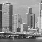 Downtown Miami by Bill Wetmore