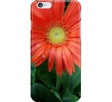 Happy to See You iPhone Case/Skin