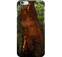 The Beauty Within iPhone Case/Skin