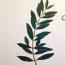 mural of olive branch by evon ski