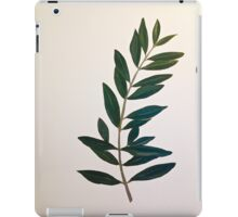mural of olive branch iPad Case/Skin