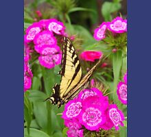 Butterfly In The Flowers    Pentax Digital Camera Pentax (X-5) Unisex T-Shirt