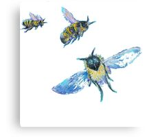 Three flying bees painting Canvas Print