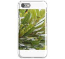 Green Banksia iPhone Case/Skin