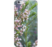 Pink Boronia iPhone Case/Skin