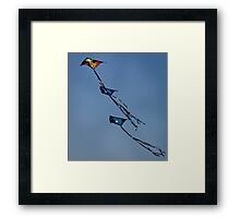 Let's Go Fly A Kite.... Framed Print