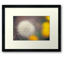 Fluffy Father Christmas Framed Print