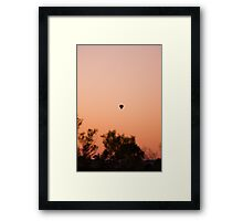 Hot Air Balloon Ride at Dawn Framed Print