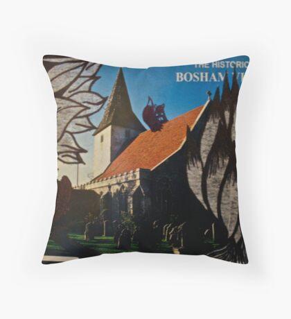 the squirrel of bosham village Throw Pillow
