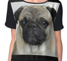 mops little dog Chiffon Top