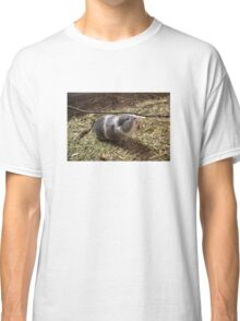 Guinea Pig Pet Sticker Classic T-Shirt