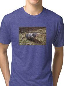 Guinea Pig Pet Sticker Tri-blend T-Shirt