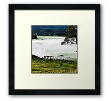 Foggy Cow Crossing Framed Print