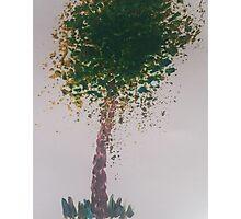 Simple tree Photographic Print