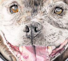 Freddie- Staffordshire Bull Terrier Sticker