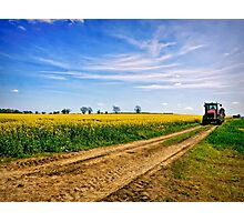 Country Life Photographic Print