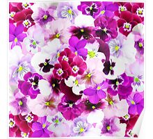 Cute bright pink red trendy organic pansies flowers Poster