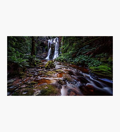 The Falls in Rainforest Photographic Print