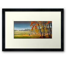Pasture Meadow Framed Print