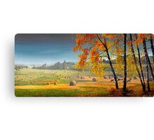 Pasture Meadow Canvas Print