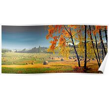 Pasture Meadow Poster