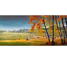 Pasture Meadow Photographic Print