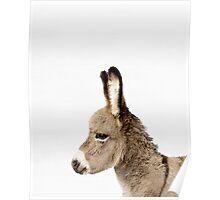 Donkey print, Nursery, Animal, Kids room, Modern art, Wall decor Poster