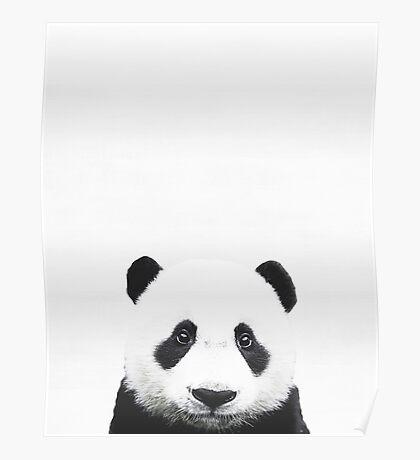 Baby Panda, Nursery, Animal, Kids room, Modern art, Wall decor Poster