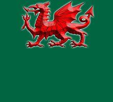 WALES, WELSH, RED DRAGON OF WALES, WELSH FLAG, on Green Unisex T-Shirt