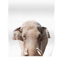 Elephant print, African Safari, Nursery decor, Animal, Kids room, Modern Wall Poster