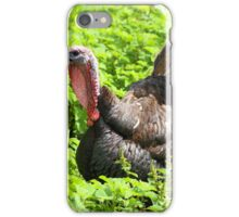 Turkey in a Bush iPhone Case/Skin