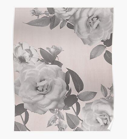 Roses print, flowers, modern print, plant Poster