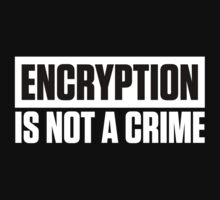 ENCRYPTION IS NOT A CRIME Kids Tee