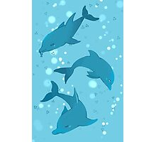 Blue Dolphin Photographic Print