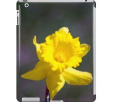 Spring Flower Series 19 iPad Case/Skin