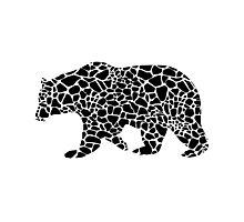 Bear with giraffe print Photographic Print