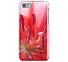 Pink Lily Up Close iPhone Case/Skin