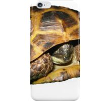 Greek Tortoises in Shell iPhone Case/Skin