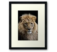 King without a crown Framed Print