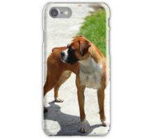 Dog on a Sidewalk iPhone Case/Skin