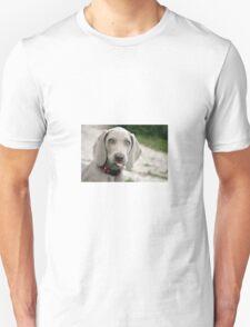Blue eyed dog Unisex T-Shirt