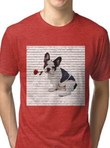 Frenchie Holding Rose Tri-blend T-Shirt