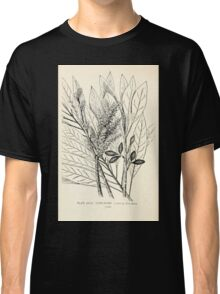 Southern wild flowers and trees together with shrubs vines Alice Lounsberry 1901 039 Cork Wood Classic T-Shirt