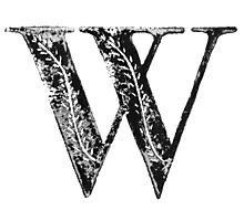 Serif Stamp Type - Letter W Photographic Print