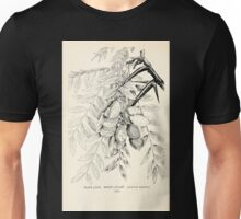 Southern wild flowers and trees together with shrubs vines Alice Lounsberry 1901 079 Water Locust Unisex T-Shirt