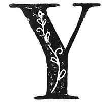 Serif Stamp Type - Letter Y Photographic Print