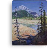 Mountain Marsh Canvas Print